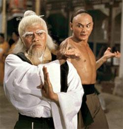 Student Teacher Kung-fu